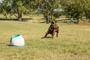 iFetch Too Ballwurfmaschine für größere Hunde